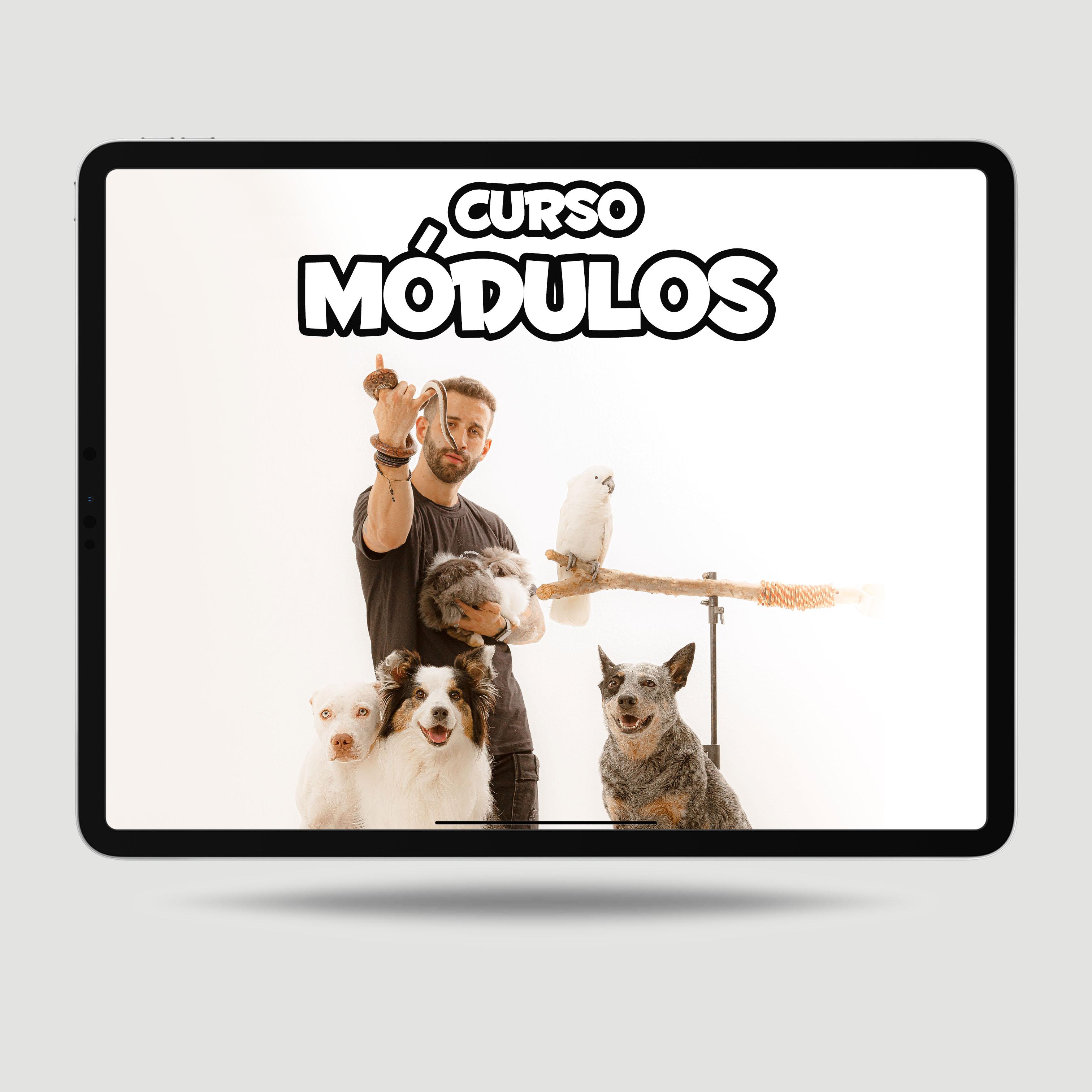 Imagem CURSO MÓDULO FILHOTES